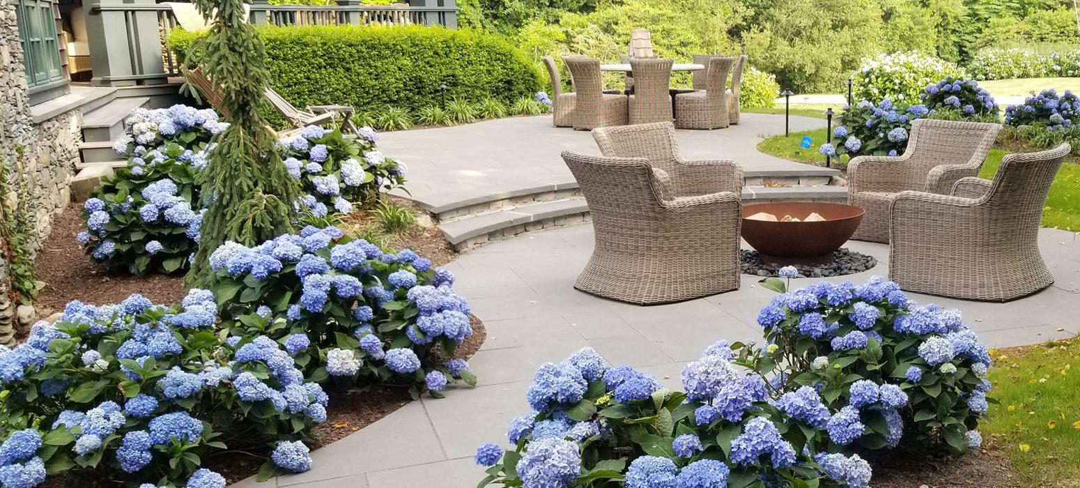 Backyard space design by Shalvey Bros Landscape