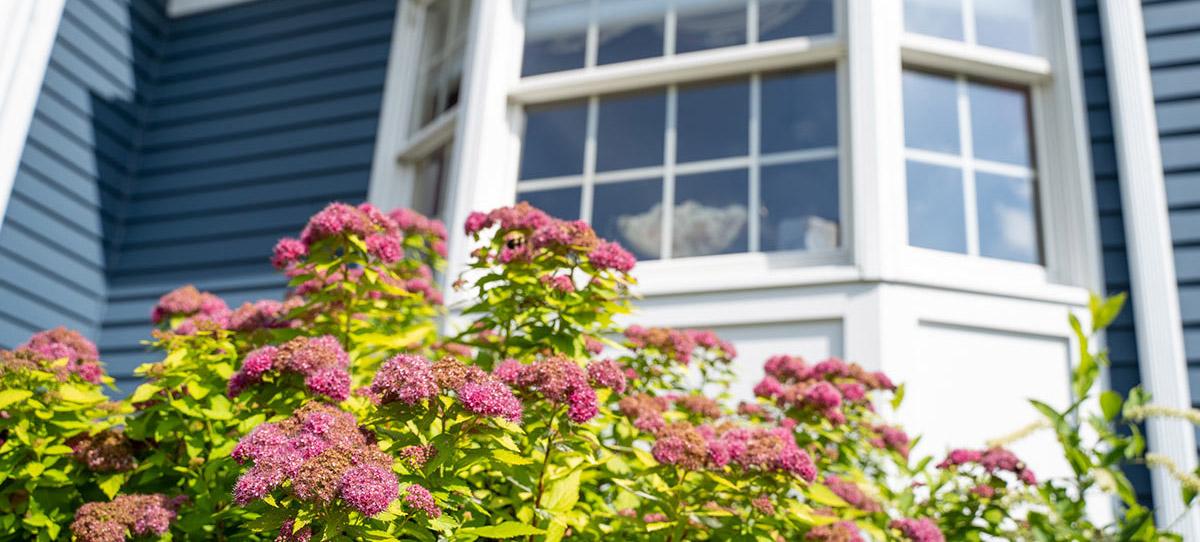 North Kingstown Residence Window
