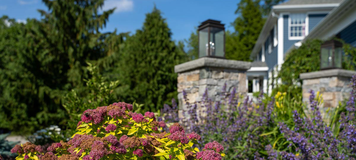North Kingstown Residence Side Garden